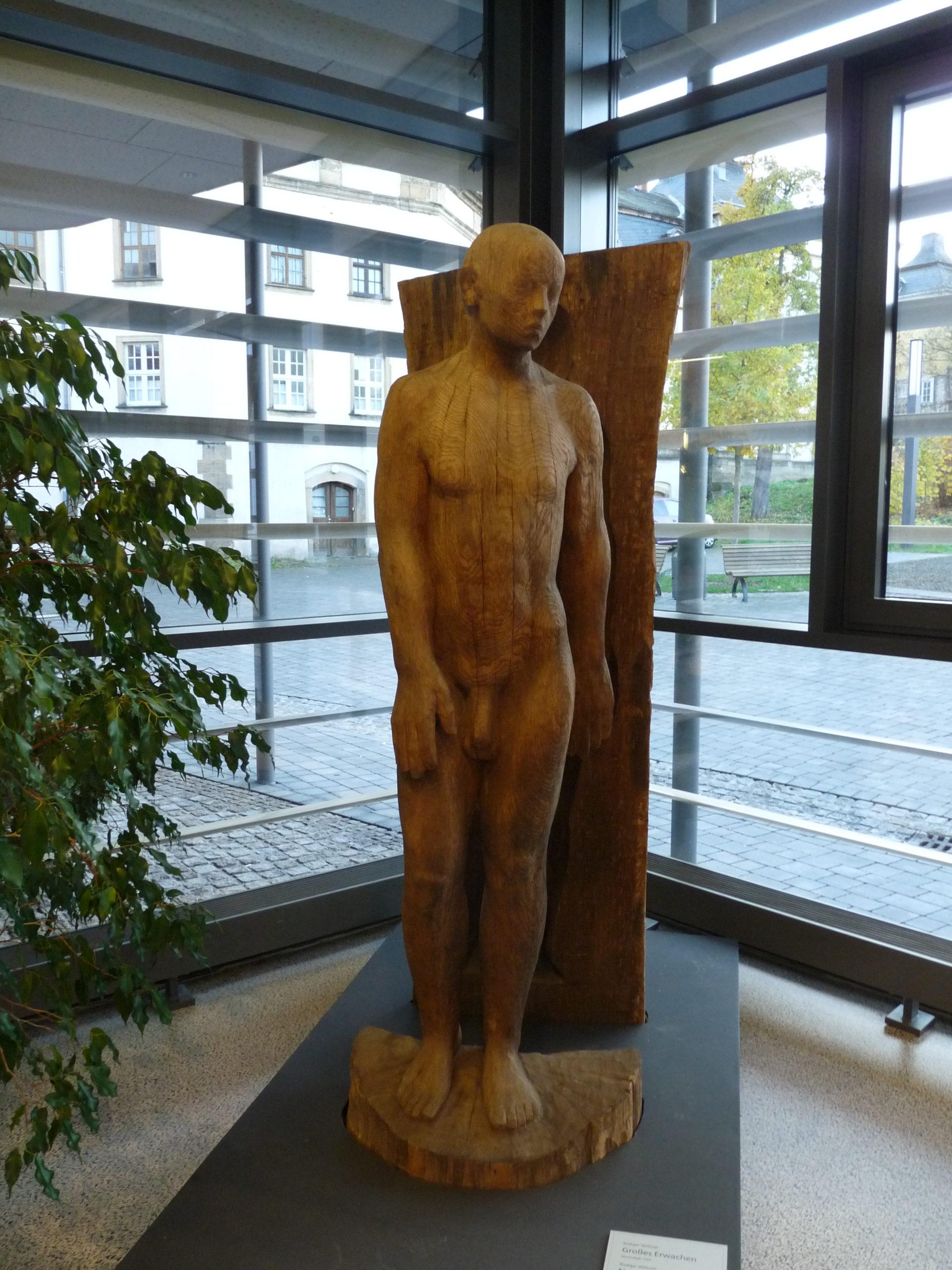 Skulpturen des Künstlers Rüdiger Wilfroth für die Stadtbibliothek Bild
